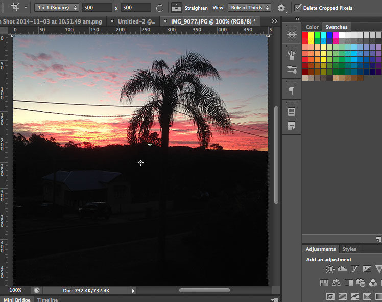 adobe photoshop sunset palm
